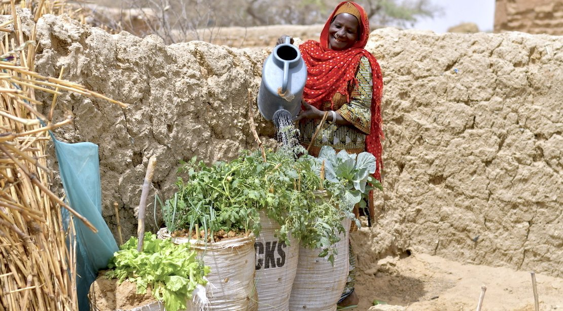 A beneficiary watering her sack gardens in the Diffa region © Welthungerhilfe/CESVI